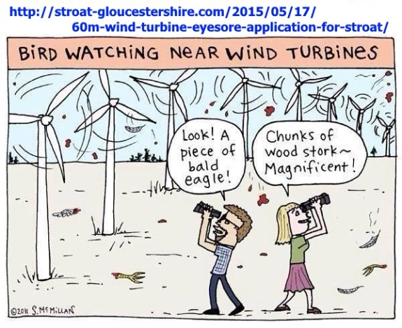 BIRD WATCHING & TURBINES 001