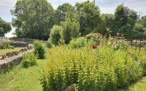 stroat-farm-cottage-garden-01