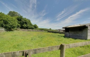 stroat-farm-cottage-paddock-01